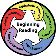 5 components of reading instruction